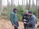 Foresters exploring the Rosskopf Marteloscope